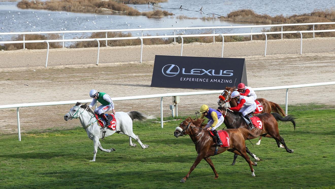 Lexus sponsors Rashid Equestrian and Horse Racing Club